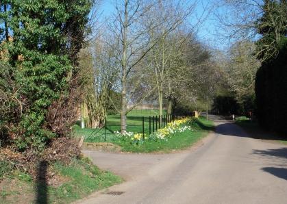Mollington Road